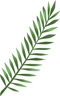 elements summer sale banner NK5W2VA leaf 3